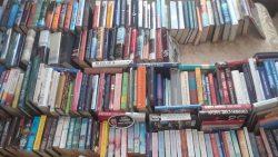 The HCDP Book Fair Is Closing Soon!