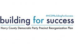 What Happens at Precinct Reorganization? How Can You Get Involved?