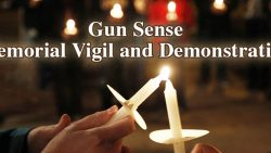 Join HCDP's Vigil at Myrtle Beach Gun Show