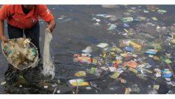Taking Action on Plastic Litter