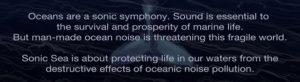 sonic-sea-quote