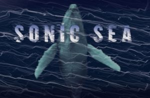 sonic-sea-whale-only