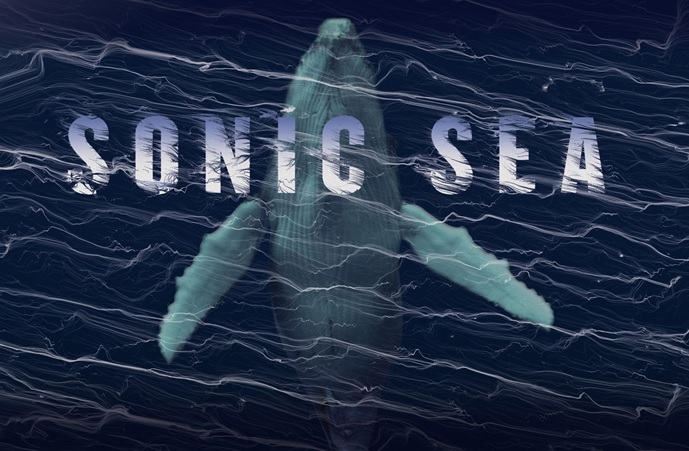 Free Screenings of Film Showing Risks of Seismic Air Gun Blasting in the Atlantic